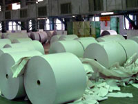 Manufacturing of paper no threat to forest cover