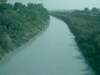 Kanpur development authority to take steps to save Pandu river from pollution