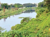 Incensed at blatant encroachment near Rispana river, Doon residents set to move NGT