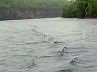 Link rivers in a time-bound manner, CIFA urges government