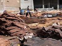 How can you regulate tanneries, if you can't enter there: NGT