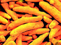 Coal miners switch to turmeric farming