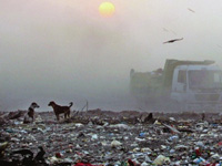 Tribunal seeks reply on Gurgaon landfill 'polluting' groundwater