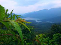 The Western Ghats: biodiversity hotspot