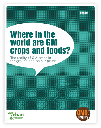 Where in the world are GM crops and foods?